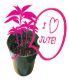 Jute facts